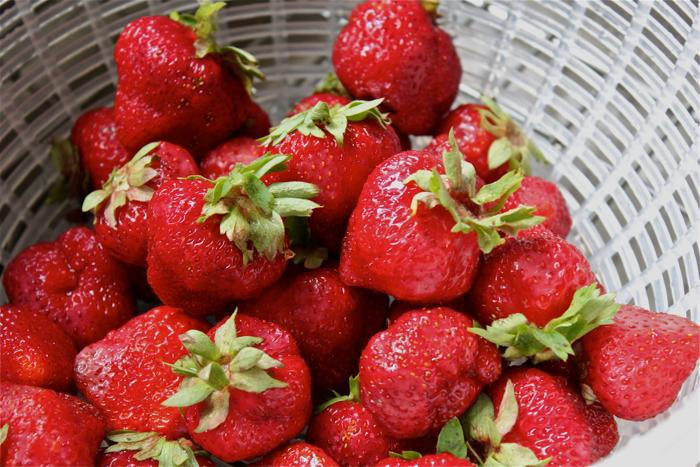 Roasted strawberries: a recipe | Yankee Kitchen Ninja