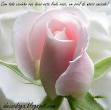 Una rosa, de otra flor hermosa