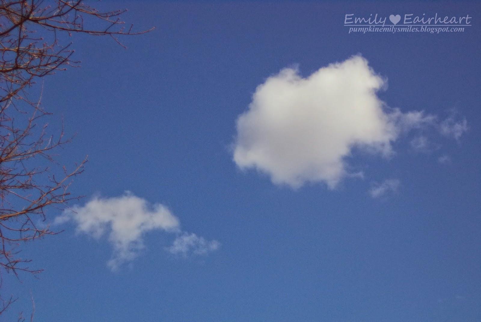 Bat and Pig Cloud Shape