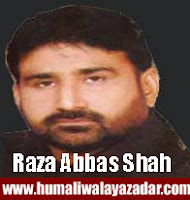 http://ishqehaider.blogspot.com/2013/07/raza-abbas-shah-nohay-2014.html
