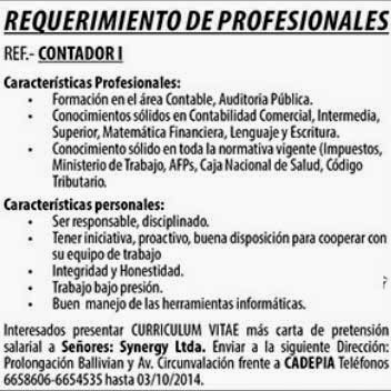 Synergy Ltda. requiere Contador