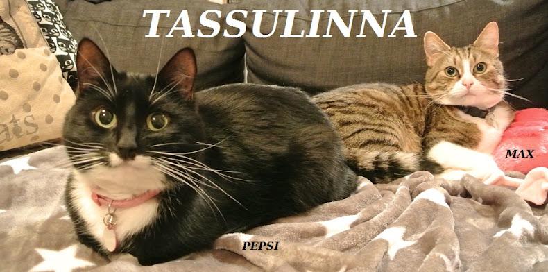 Tassulinna