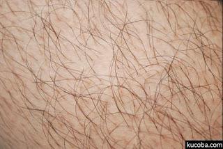 Gatal Setelah Bercukur Bulu Kemaluan