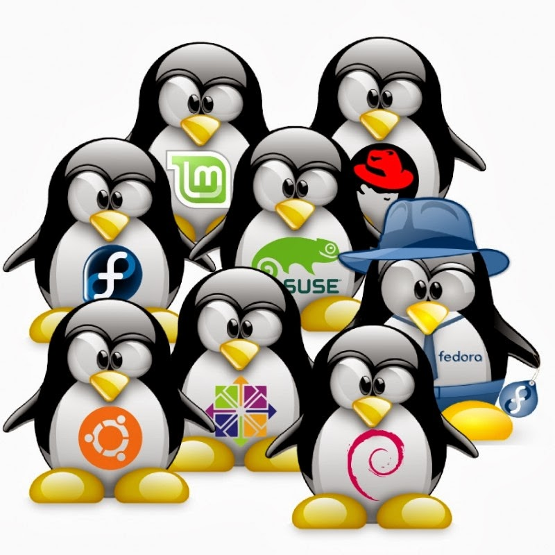 lots of linuxes