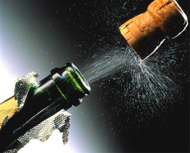 Congratz VeryDog Champagne