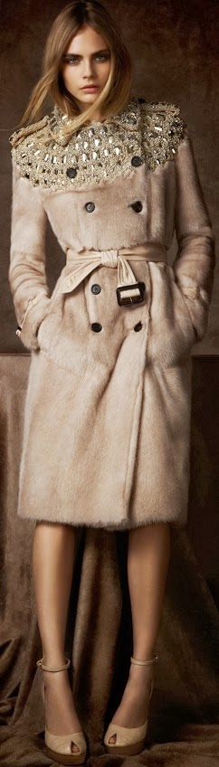 Absolutely Stunning Coat