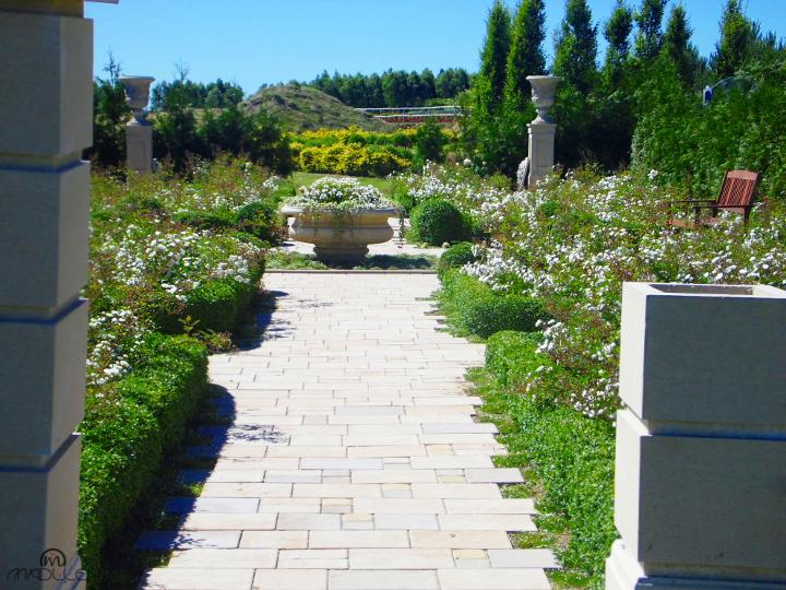 Angielski Ogród Białych Róż w Dobrzycy
