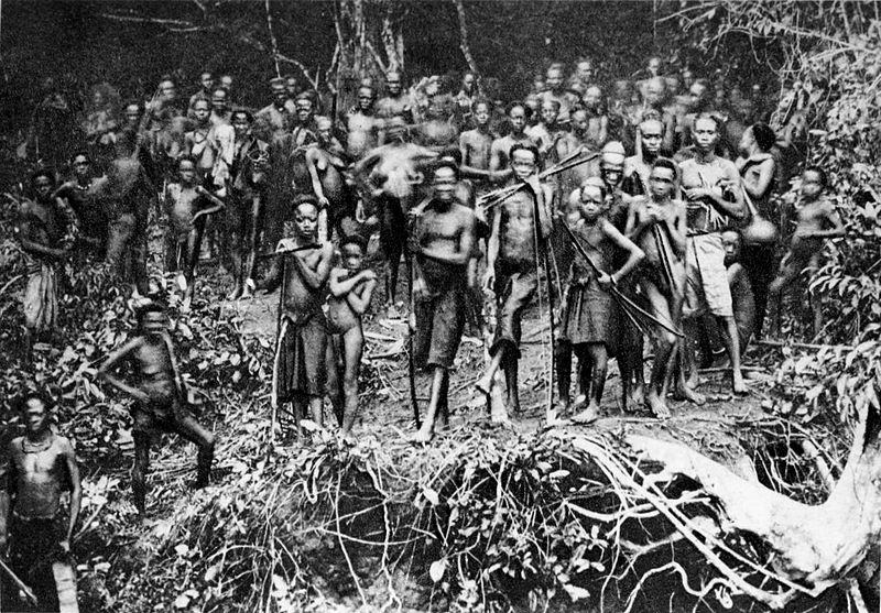 the history of the belgian congo essay Belgian colonialism in the congo forty years later a belgian parliamentary commission has started an investigation into this very dark chapter of belgian colonial history belgian congo, belgian congo essay writing help sour.
