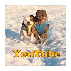 Olemme YouTubessa: