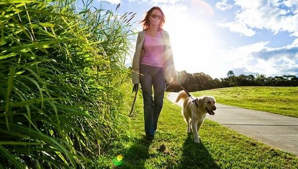 10 formas como o seu animal de estimação melhora a sua saúde mental