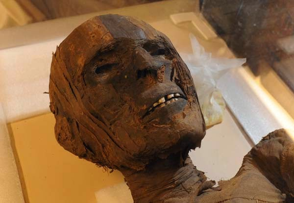 Cocaine & Tobacco Mummy Residue