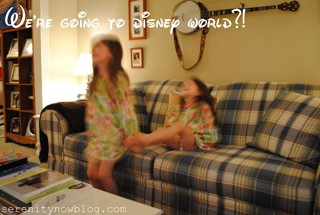 We're Going to Disney World! Serenity Now blog
