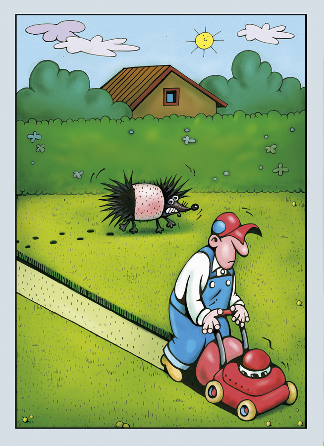 Humour de jardin joie des mots for Piscine de jardin humour