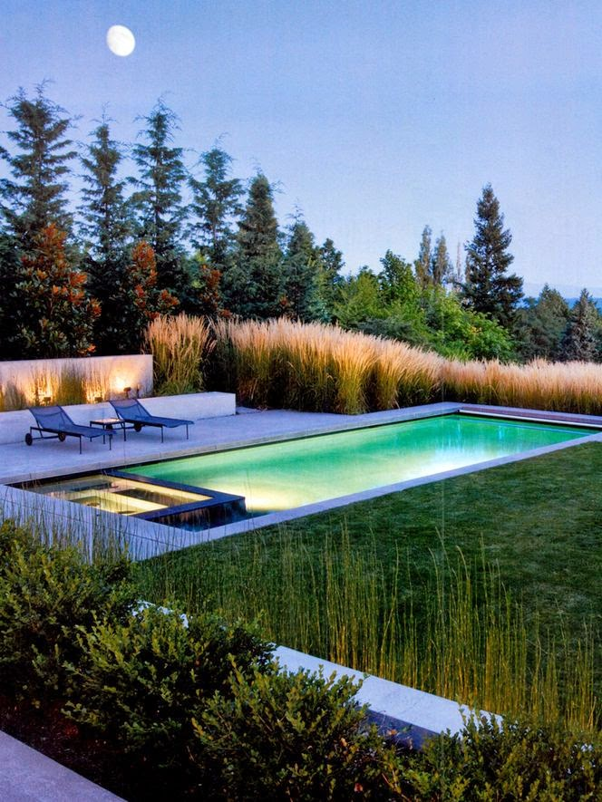 Oxford College of Garden Design 10 Swimming Pool Design Tips