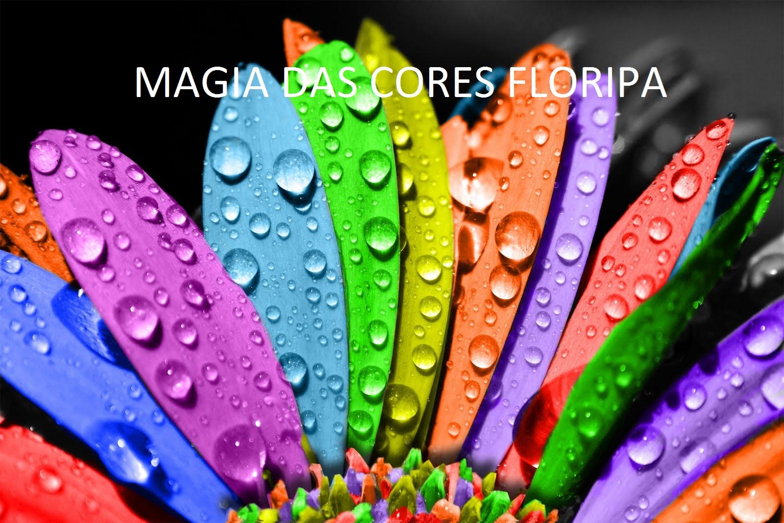 Magia das Cores Floripa