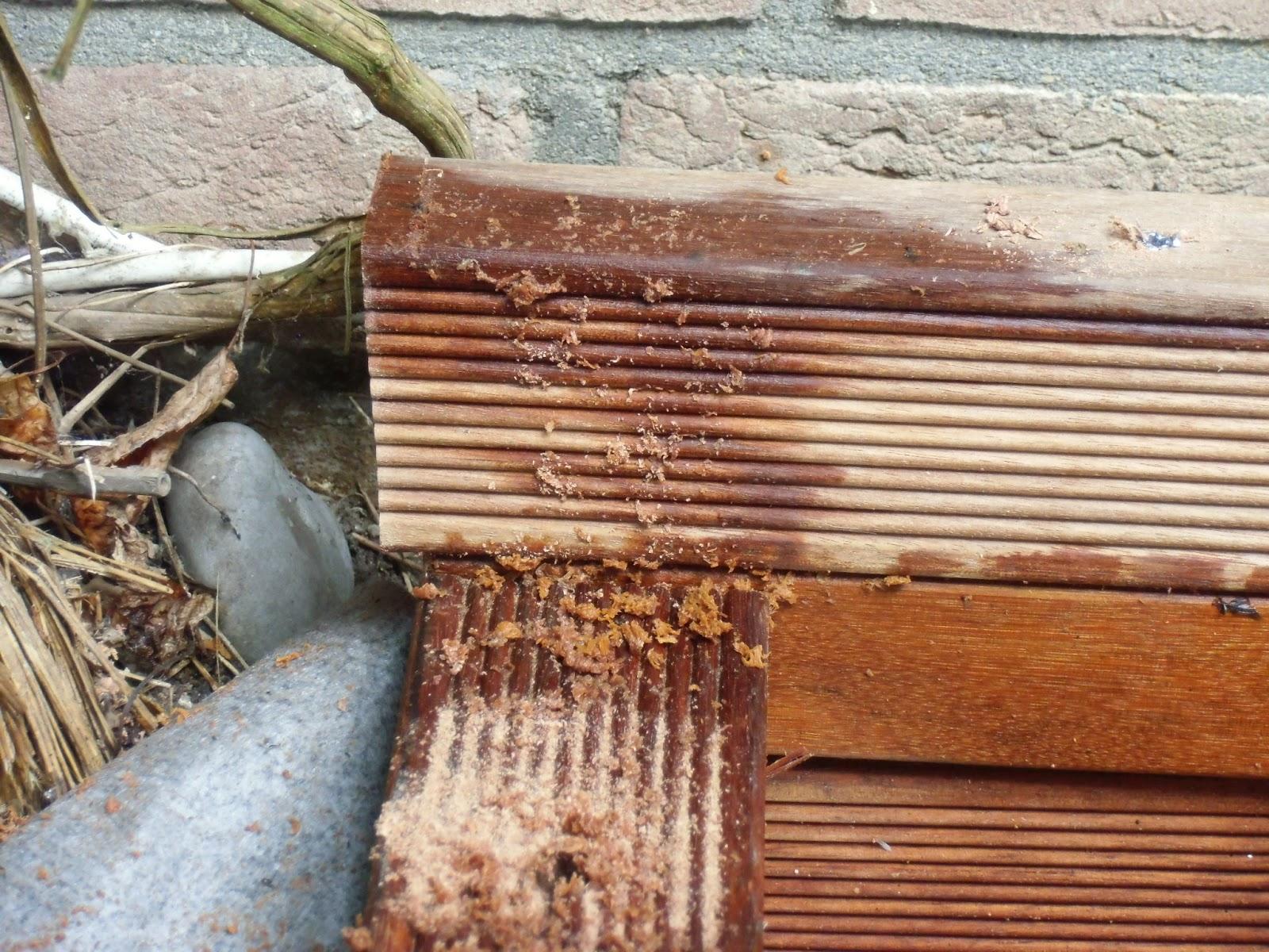 Terrasse Unterkonstruktion Verzogen 00 04 02 EgeNis