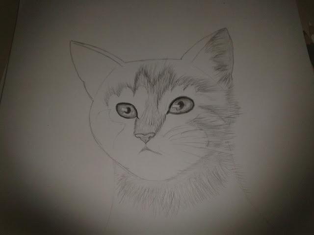 رسم الحيوانات