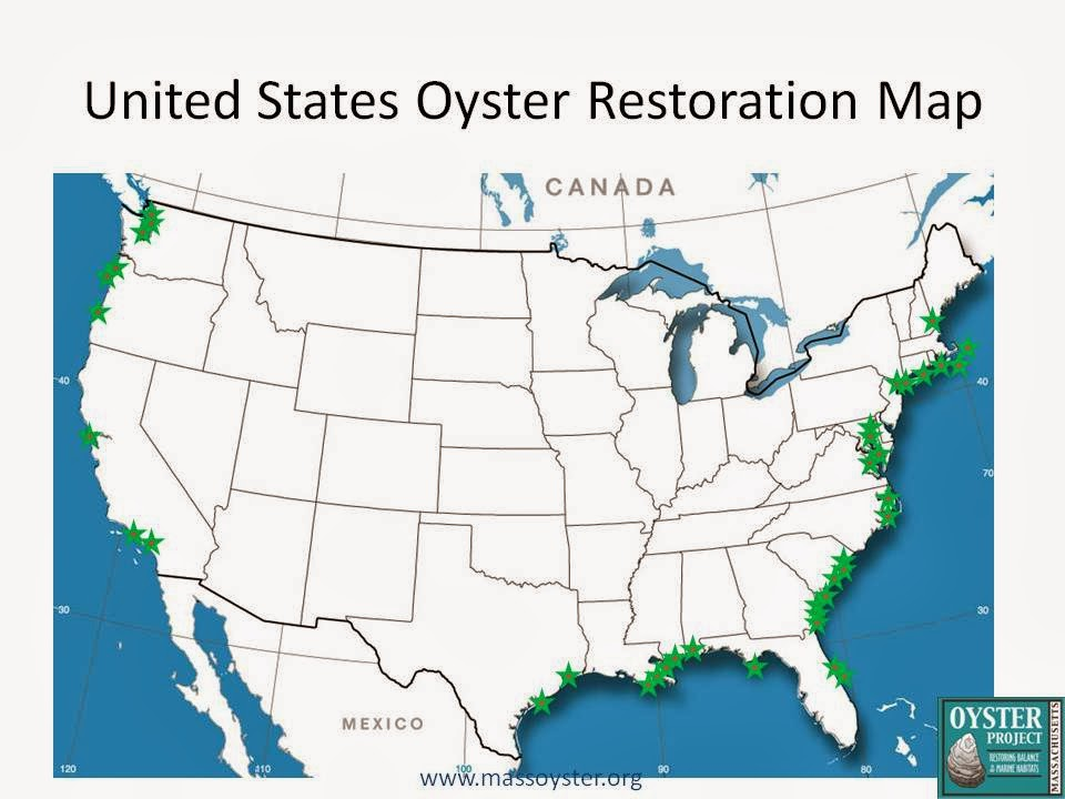 US Map with Oyster Restoration  California Chesapeake