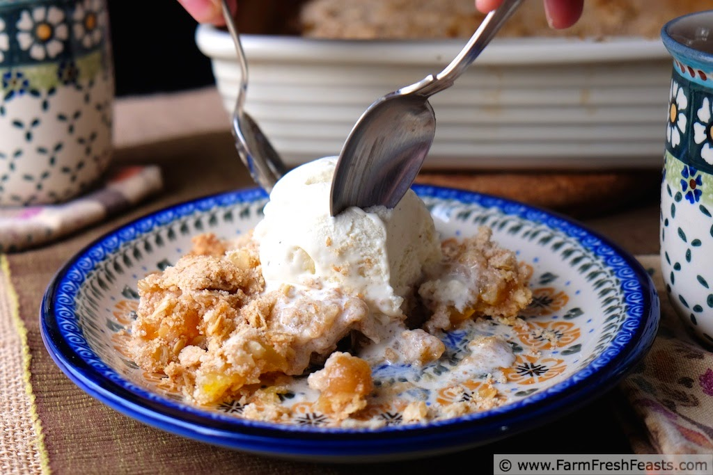 http://www.farmfreshfeasts.com/2014/09/patty-pan-squash-crumble-reflections-on.html