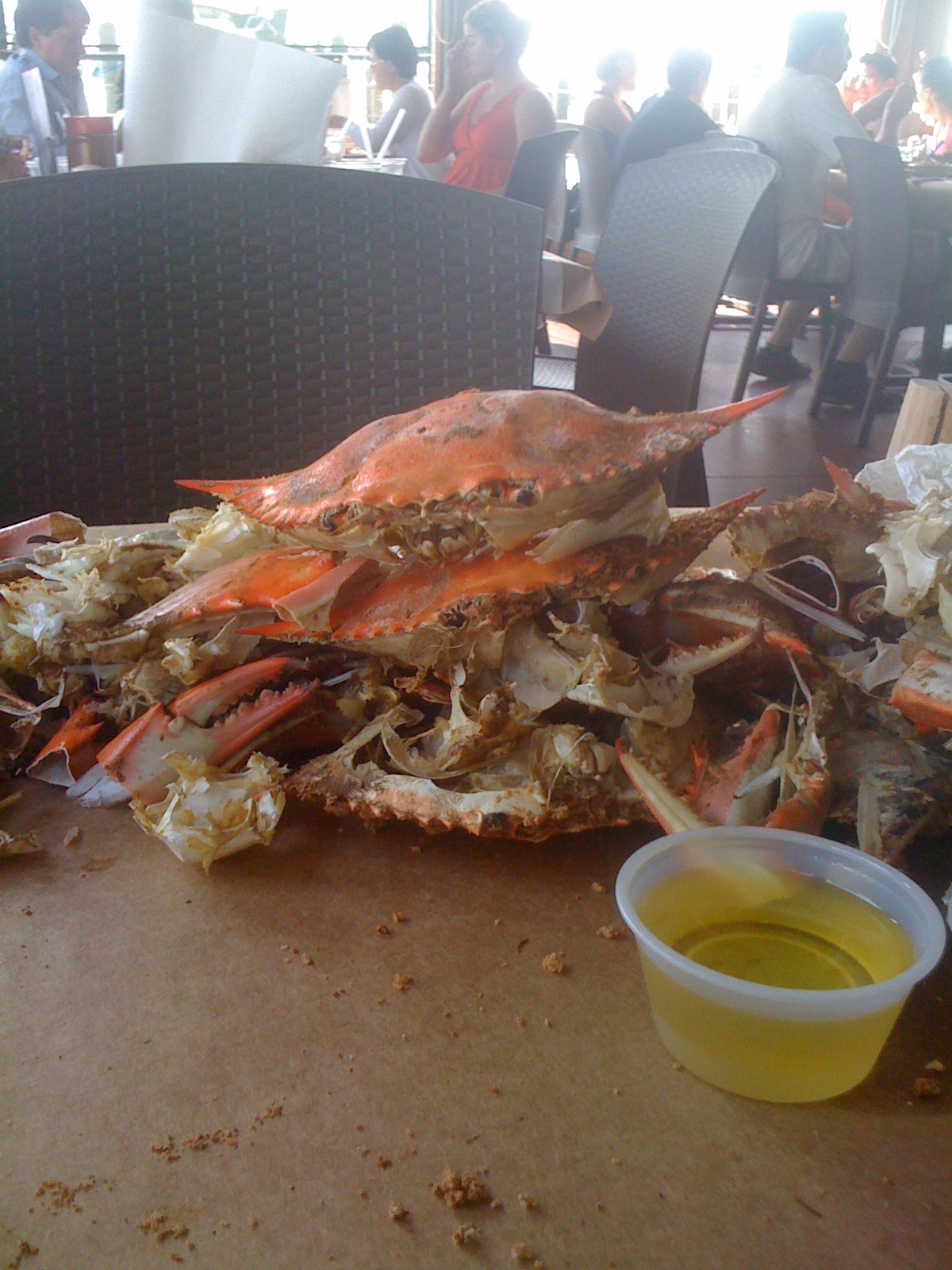 ... were excited to get out of the city and do active things like eat crabs.