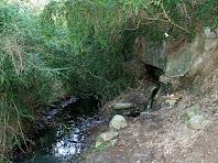 Vista general del lloc on es troba la Font de Vinya Vell