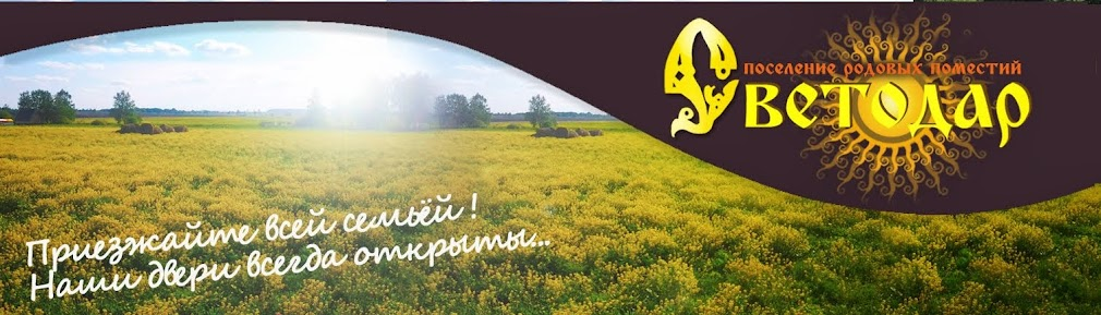 """поселение """" Светодар"""""""