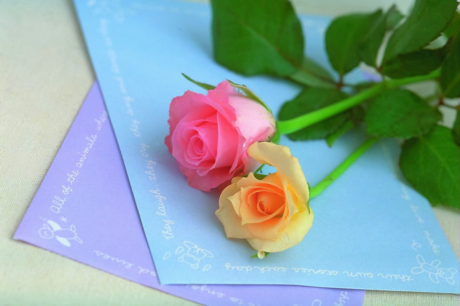 Hd wallpaper yellow rose - Happy Rose Day 2014 Hd Wallpapers And Images Pink And Yellow Rose
