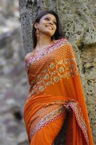 nayanatara in saree