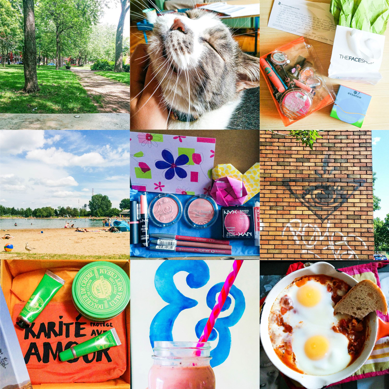 Gendots July Instagram Round Up