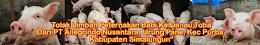 Rakyat Nagori Salbe Kabupaten Simalungun Darurat Kesehatan Akibat Kotoran Babi Bawa Virus Hepatitis