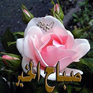 صباح الورد-مساء الفل