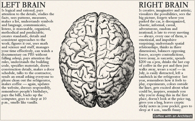 left brain and right brain of designer