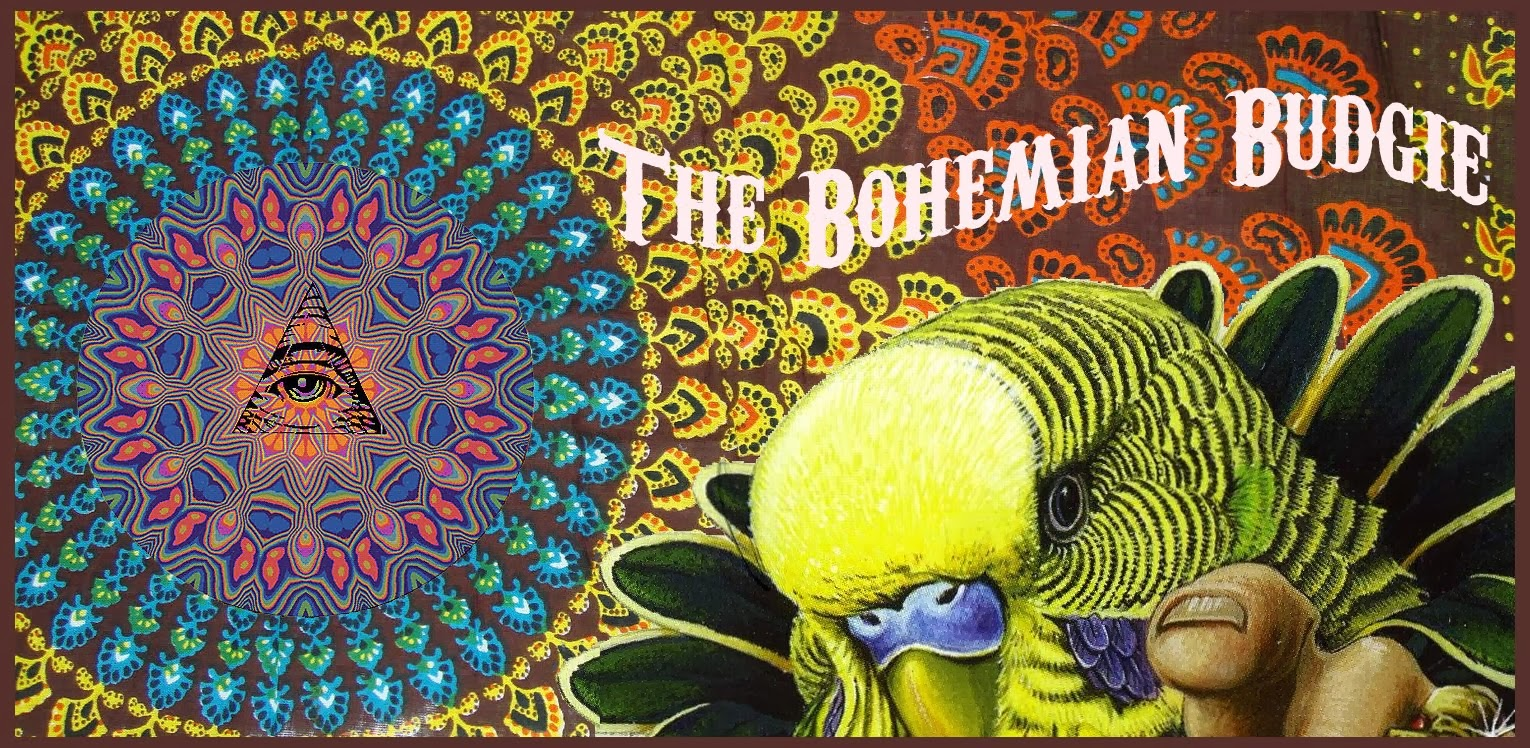 The Bohemian Budgie
