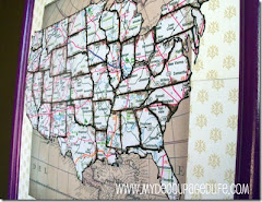 Magnetic United States Map