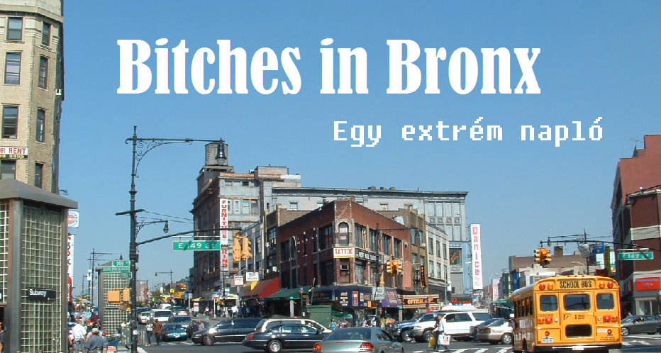 Bitches in Bronx