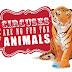 Ολλανδία: όχι άγρια ζώα στο τσίρκο...