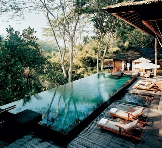 an infinity pool in a forest can you imagine the serenity