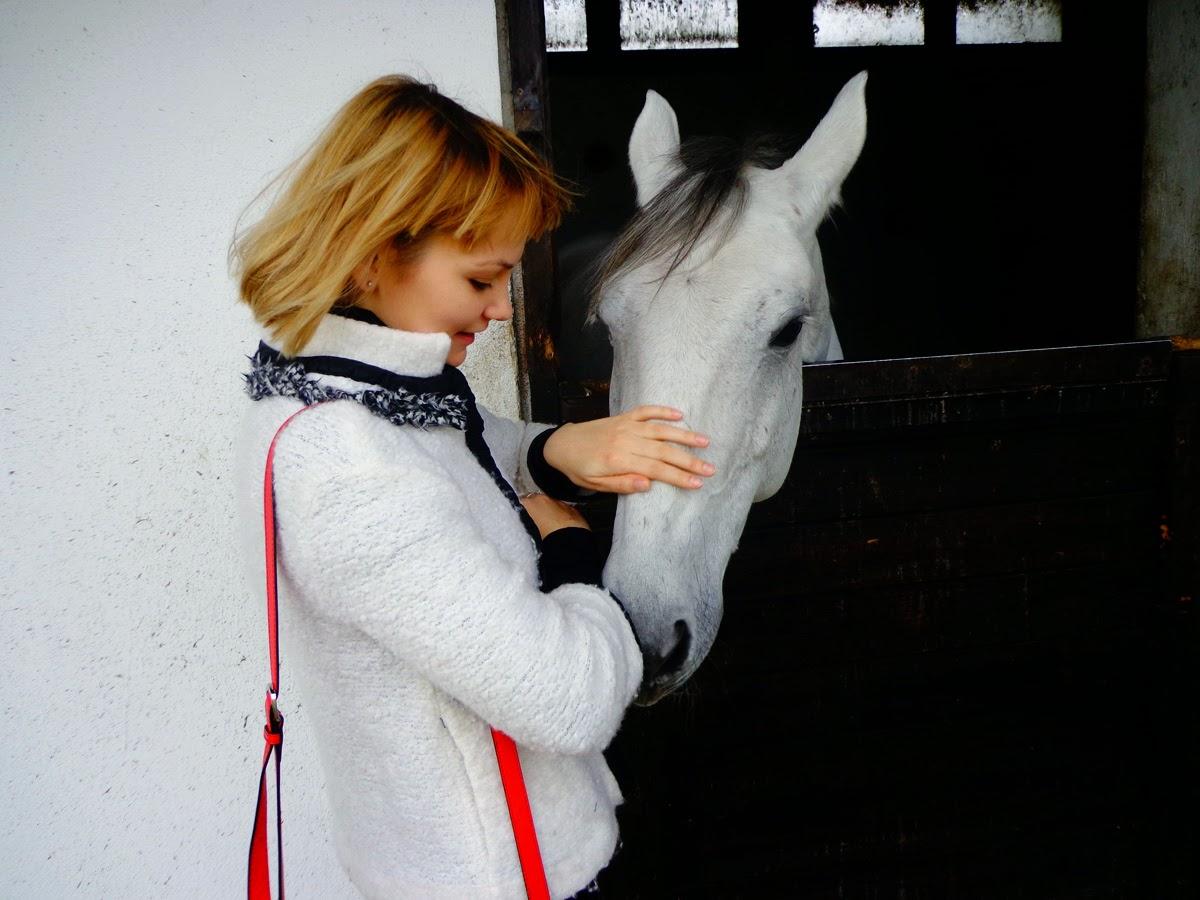 Конь-в-Порто-Каррасе