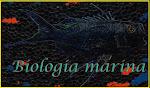 TUTTO SULLA BIOLOGIA MARINA