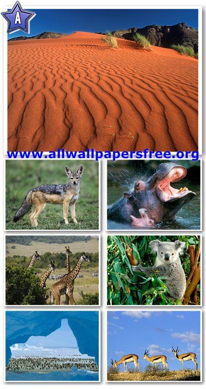 100 Impressive Nature Wallpapers 1600 X 1200 [Set 12]