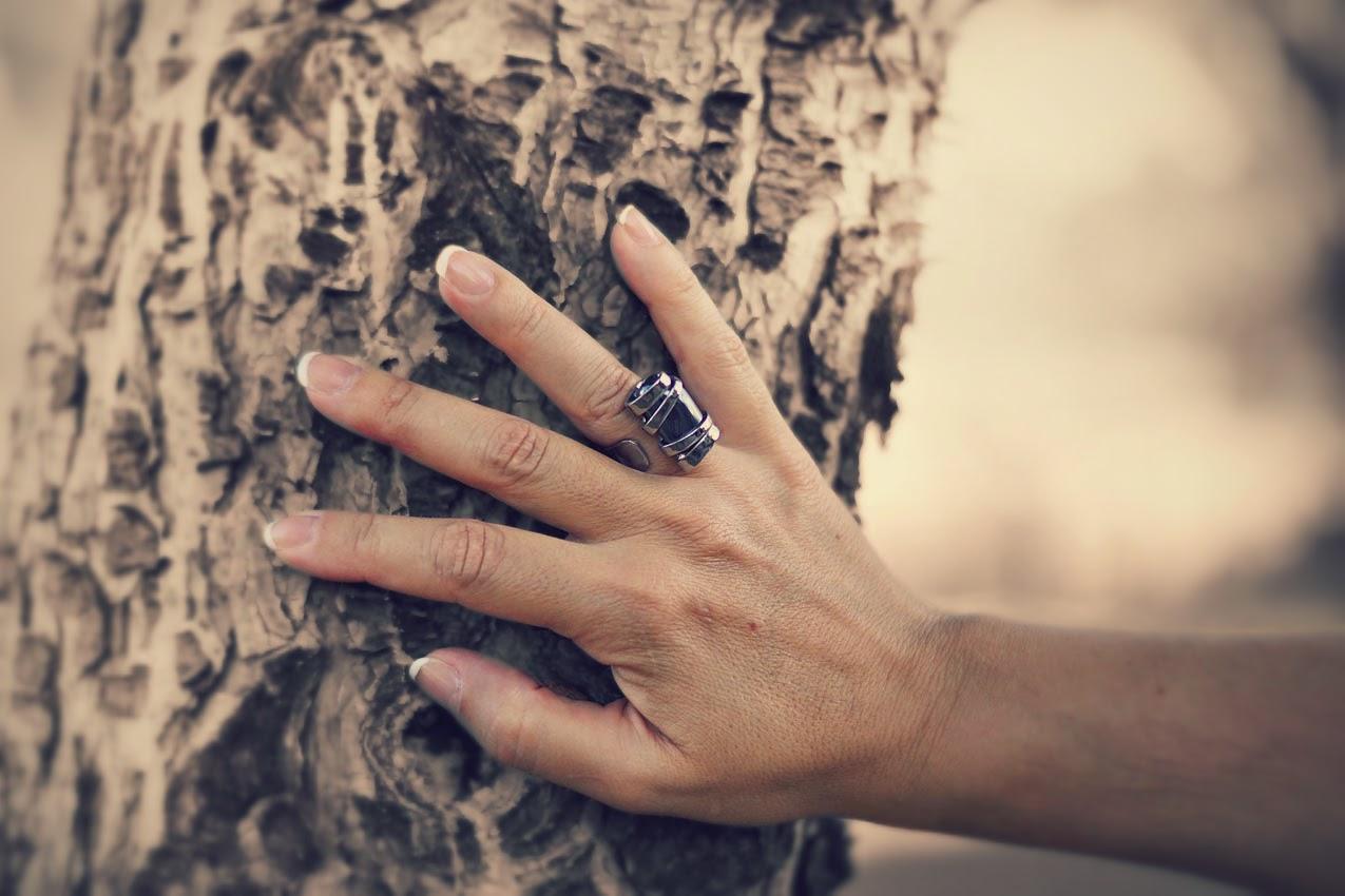 anillo+artismanuslosrosales