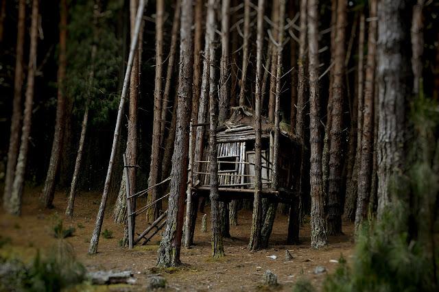 Cómo construir una cabaña
