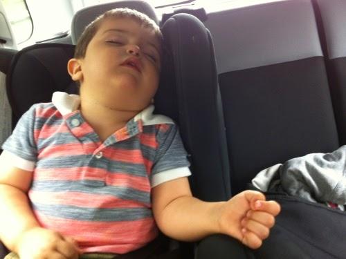 Trip to Belgium: Leo the troublemaker