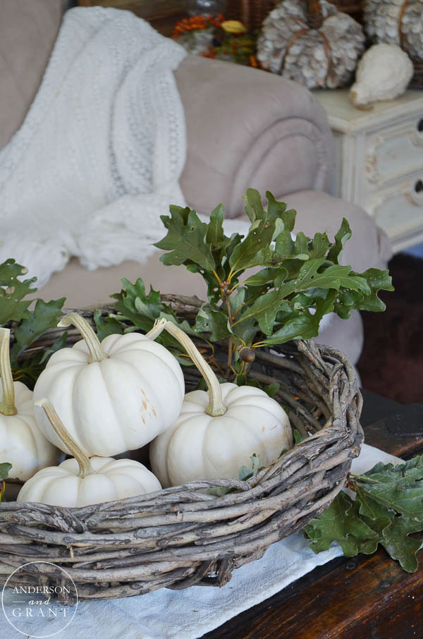 Grapevine basket filled with white pumpkins