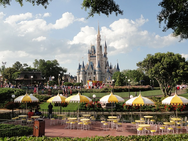 "Luxury DISNEY WORLD Vacation for your family (with ""low cost"")!  CLICK on photo:"