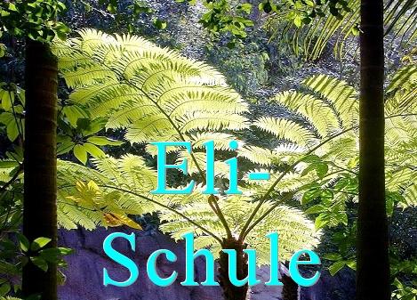 http://armin-risi.ch/Buecher/Der_radikale_Mittelweg.html