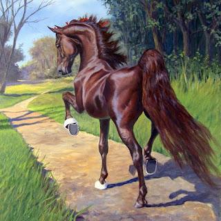 Pinturas Oleo Sobre Caballos