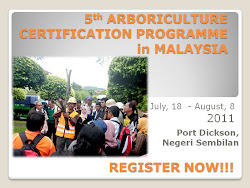 Arborist Certification Programme