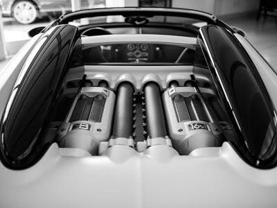 Bugatti Veyron 16.4 Grand Sport Blanc Noir engine
