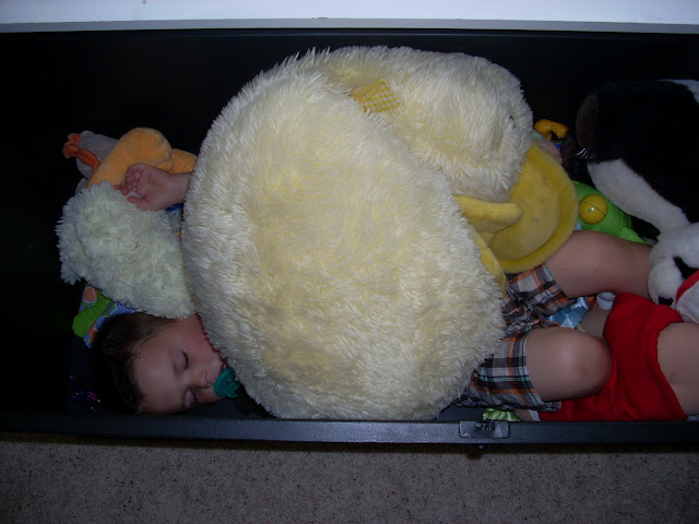 child sleeping in toy chest